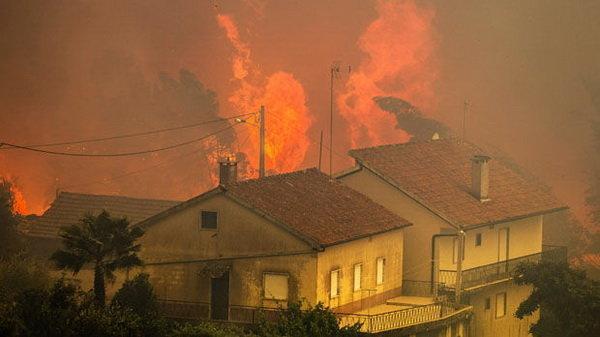 وقوع چندین آتش سوزی طبیعی در سراسر گرجستان